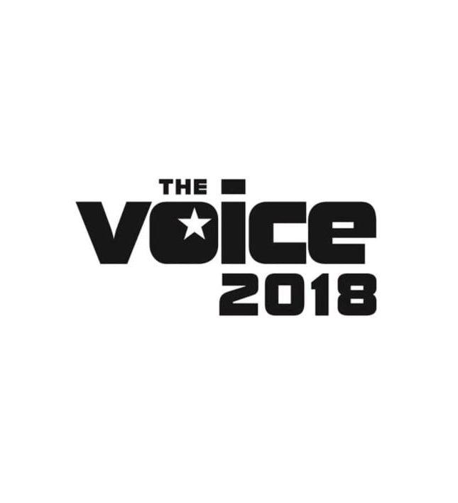 Roland Töfferl ist in der Jury von The Voice